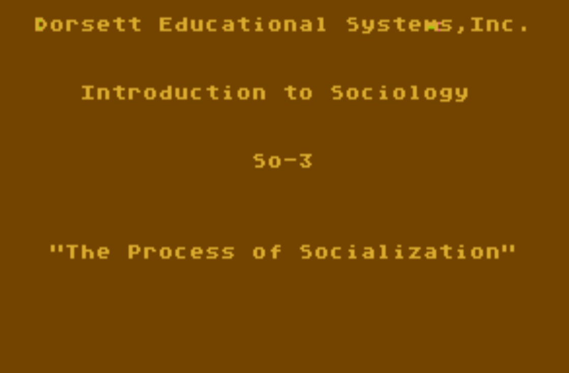 Basic Sociology CX6005/BS04.jpg